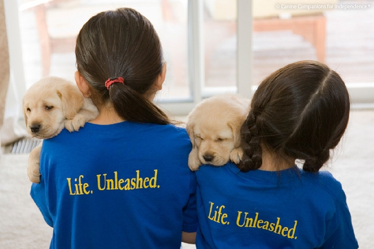 Paws for a cause: Behind the scenes of Canine Companions for