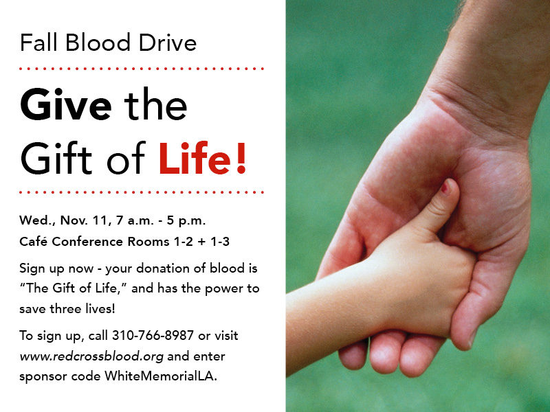 fall blood drive flyer