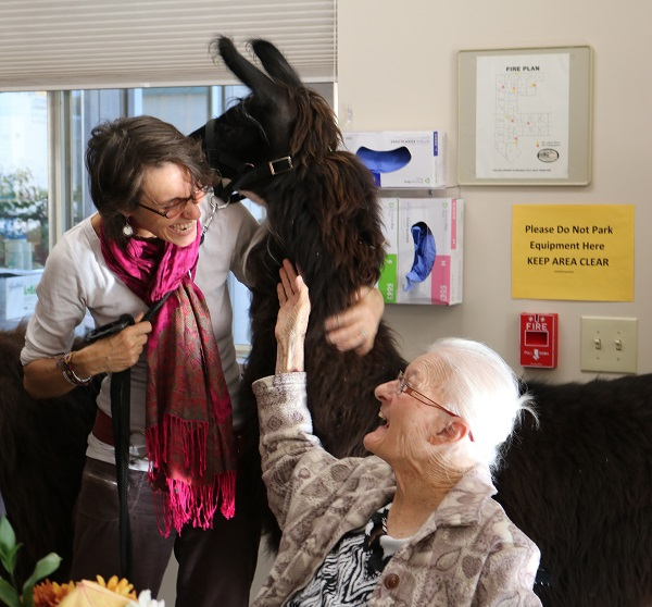 two women with therapy llama