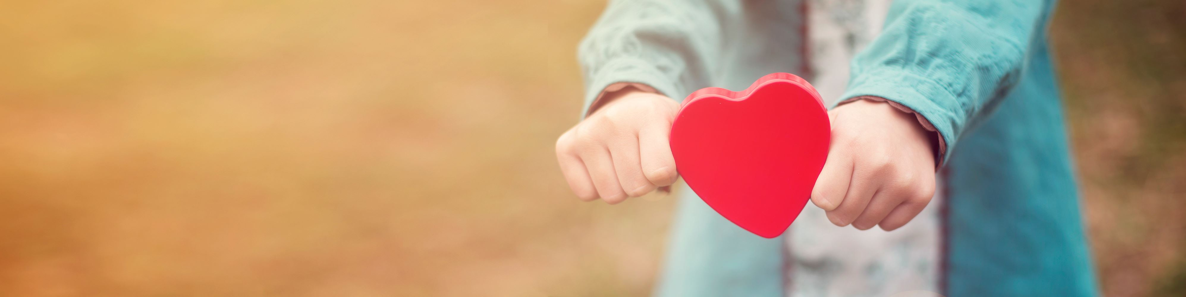 Foundation Giving Donation Heart Hands