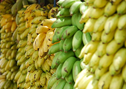 Bananas can be a great source of fiber